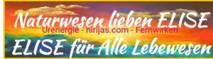 Naturwesen Elise Mila Energie Technik Rosenheim u Ferne Heilung Einweihung Trainer - Heiler